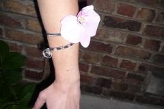 Bracelet demoiselle (2)
